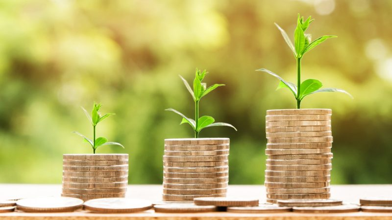 ESG funds: pay dividends or employees in COVID era?